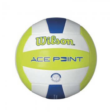 Ace Point Volley